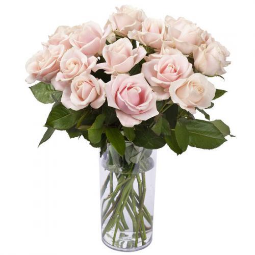 3,50-euros-la-rose-rose-1516288.jpg