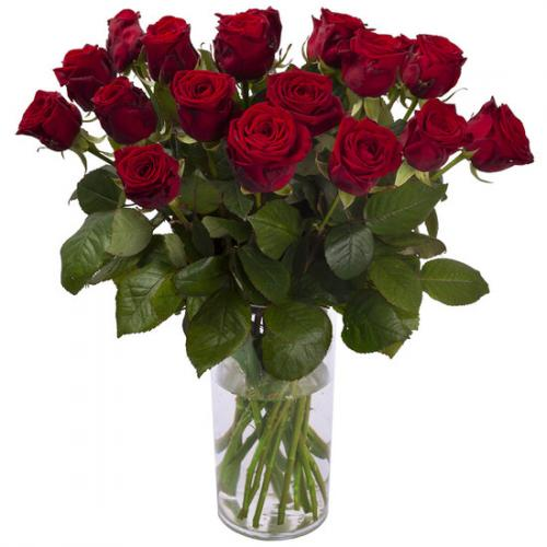 3,50-euros-la-rose-rouge-1516328.jpg