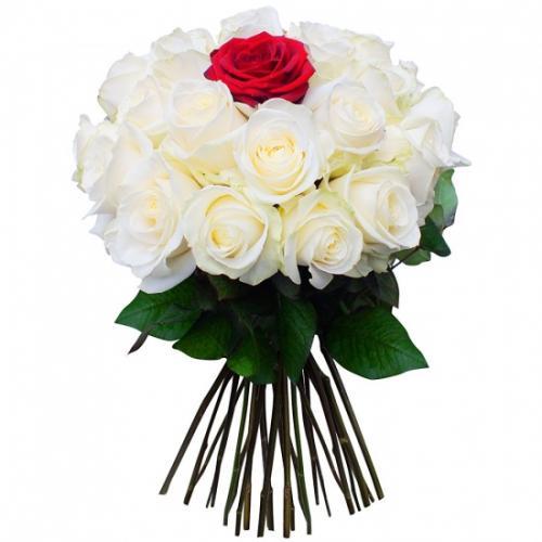 bouquet-de-roses-eclat-d--476844.jpg
