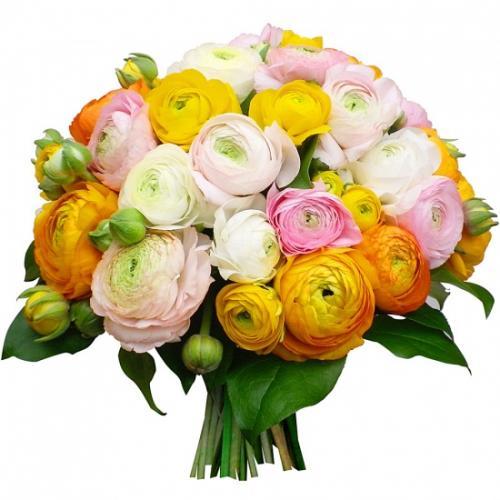 bouquet-tendres-renoncule-218604.jpg