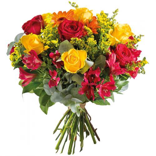 flamboyant-1167156.jpg
