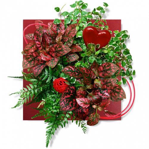 tableau-vegetal-amour-pas-301748.jpg