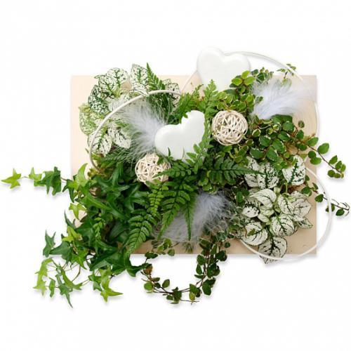 tableau-vegetal-d-amour-p-301683.jpg