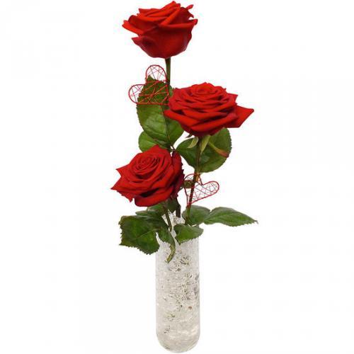 trio-de-roses-rouges-779691.jpg