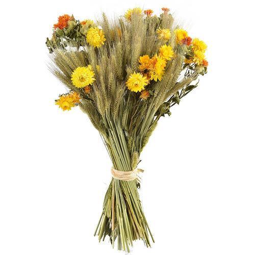 bouquet-prague-46250.jpg