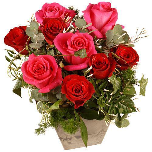rosarose-11417.jpg