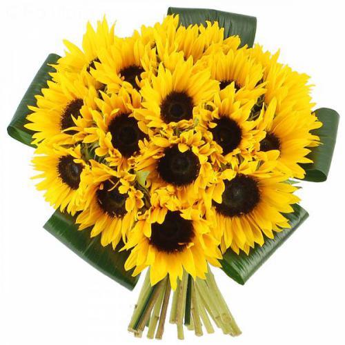 bouquet-de-soleils-159.jpg
