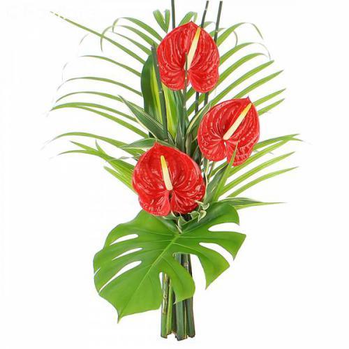 bouquet-zen-passion-216.jpg