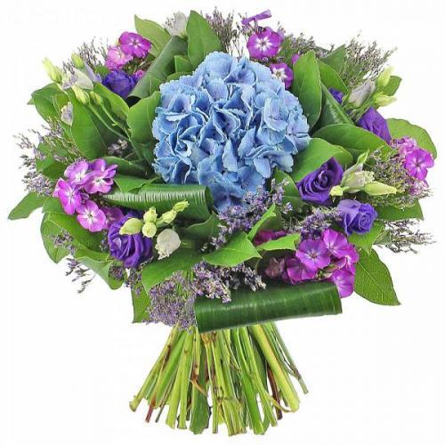 le-bouquet-birdy-575.jpg