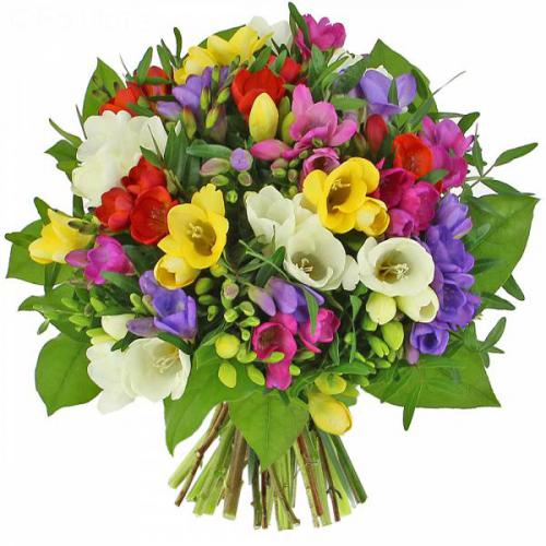 le-bouquet-de-freesias-215.jpg