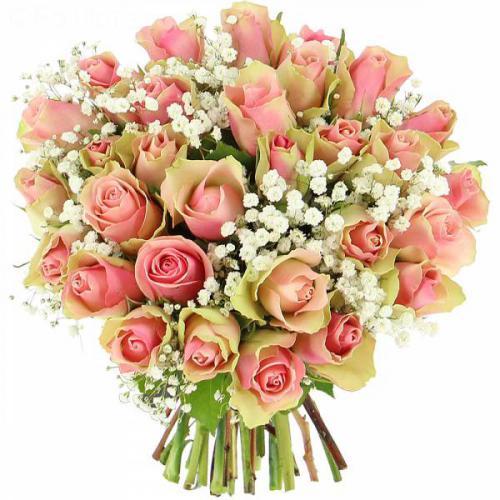 roses-caresses-506.jpg