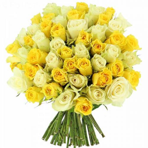 roses-citronn-es-357.jpg
