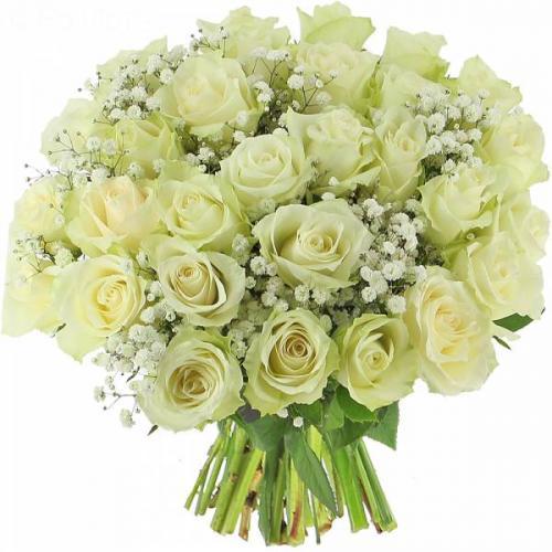 roses-eclat-525.jpg