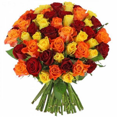 roses-estivales-355.jpg