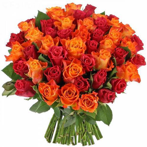 roses-flamboyantes-342.jpg