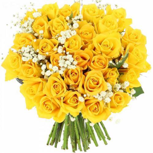 roses-lemon-508.jpg