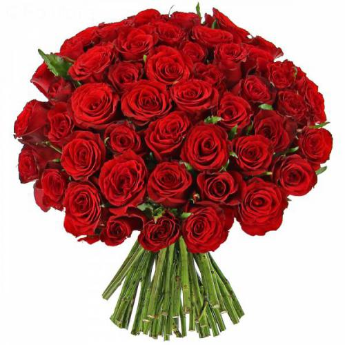 roses-rouges-passion-141.jpg