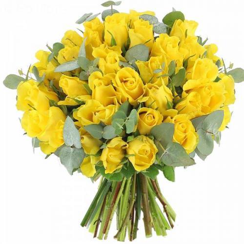 roses-sunshine-588.jpg