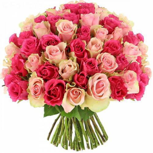 roses-sweety-501.jpg