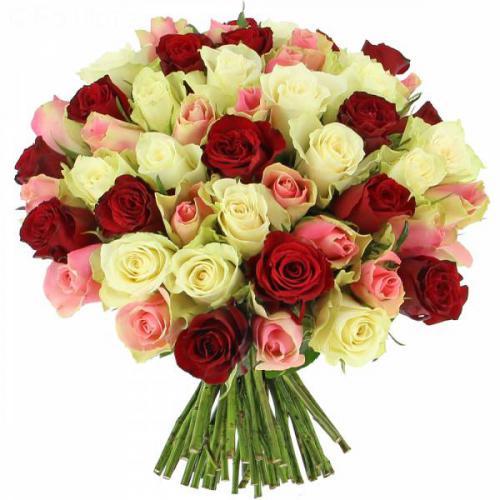 roses-tendresse-143.jpg