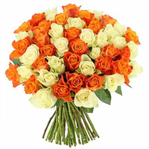 roses-tonic-356.jpg