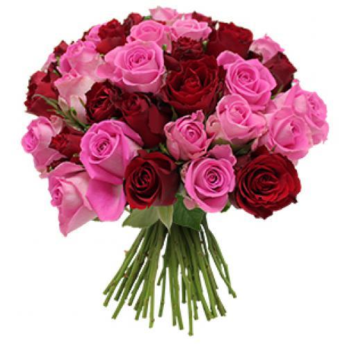 flor-a-la-folie-40-rose-fp02.jpg