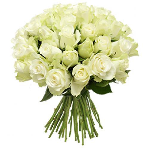 flor-absolu-40-roses-fw02.jpg
