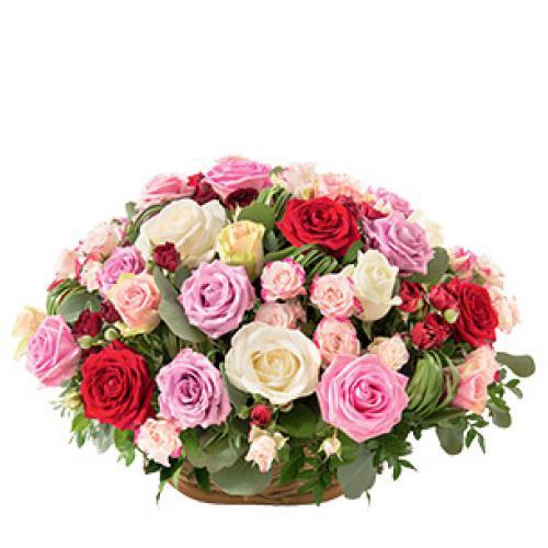 rosae-6p05.jpg